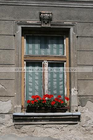 Varaždin · janela · window