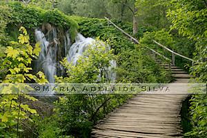 trilha dos Lagos de Plitvice · Plitvice Lakes trail
