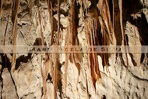 Caverna Postojna · Postojna Cave