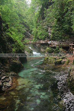 Garganta de Vintgar - Vintgar Gorge